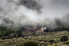 This Old House (EDU S.G.) Tags: spain españa andalucia andalusia jaen niebla fog foggy bosque forest rock hill cazorla sierradecazorla nature naturaleza natural light cloudscape clouds cloud olivo olivar olivares casa house whitehouse country countryside storm tormenta travel alone