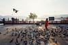 Jal Mahal, Jaipur (mr_loonglaai) Tags: jaipur jalmahal nikon f6 motion 5219 20mm