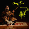 Arsi Nami playing the Persian sitar with Happy Nowruz/Equinox Message (Arsi Nami Fan Flickr page) Tags: arsinami norooz persian iran shiraz esfahan design arsi nami losangeles tar sitar setar instrument carpet musician music musictherapist singer actor songwriter menstyl menstyle mensfashion swedish 2018 notes treble clef flower spring equinox springequinox