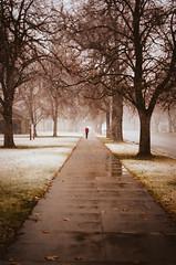 cold walk (janette_j) Tags: red cold winter walk nikon n65 ektar 100 film photography