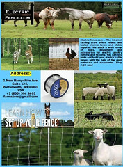 Fence tools (electricfenc) Tags: fence tools electric cattle clipper wire fastener