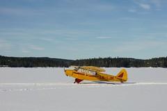 Yellow plane (janrs7) Tags: color yellow cessna snow ice marsh winter norwegianlandscape skumsjøen norway lake plane aeroplane