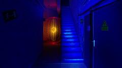 ↯↯↯ High Voltage ↯↯↯ (Sven Gérard (lichtkunstfoto.de)) Tags: lightartphotography lightart lightpainting sooc lichtkunst lichtmalerei light lights orb blue