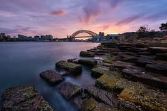 Blocked In (Crouchy69) Tags: sunrise dawn landscape seascape ocean sea water coast clouds sky long exposure barangaroo sandstone rocks blocks sydney australia