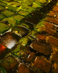 El camino de baldosas enmohecidas por el que tantos y tantos se encontraron con el Mago AtrOz (Josu Sein) Tags: baldosas pavingstones moho rust urban urbano mojado wet oneiric dreamscape onírico nightmare pesadilla surrealism surrealismo expressionism expresionismo