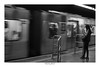 [ Waiting ] (Marcos Jerlich) Tags: blurred subway train people contrast lines march flickr 7dwf hff happyfence fence bw blackandwhite bnw monochrome mono saopaulo brasil américadosul canon canont5i canon700d efs1855mm marcosjerlich