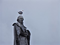 Shit happens... (Giloustrat) Tags: statue oiseau guano shit ecosse glasgow dimagea1 goeland