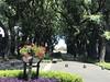 Cementerio La Chacarita (sekuas43) Tags: sol capitalfederal argentina buenosaires fotografía tumba carlosgardel paseo contraste mausoleo paisaje belleza antigüedad arboles flores lachacarita cementerio