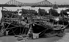Kolkata: Hooghly River Port, Howrah Bridge (gerard eder) Tags: world travel reise viajes asia southasia india westbengal kolkata calcutta hooghly hooghlyriver river port hooghlyriverport howrahbridge bridges brücken puentes puerto harbour hafen harbor boats boote barcas ships ship dhau outdoor