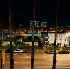 San Jose (bior) Tags: sanjose downtownsanjose longexposure night downtown hasselblad500cm distagon mediumformat 120 6x6cm kodakportra portra street tower palmtree