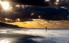 the storm is coming (ylemort) Tags: beach sea sunset nature sky sand cloudsky coastline outdoors water dusk cloudscape vacations sun landscape summer silhouette sunlight scenics beautyinnature everypixel koksijde canon canon5dmkiv kust zee orage tempête