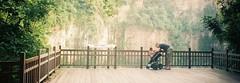 Pentax Espio 928, Fuji Superia 400 (Floy Chan) Tags: quarry naturepark pentaxespio colorfilm