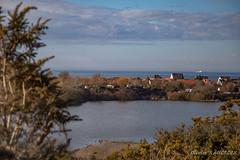 20180311_162652_0035 (Olivier_1954) Tags: vacances france balade village wissant immeuble marais mer paysage séjour visite tardinghen hautsdefrance fr