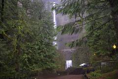 Expectations (Don César) Tags: multnomahfalls cascadas usa unitedstatesofamerica oregon portland cascada catarata tallest classic tourism nature water agua