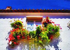 Moura | Моура (António José Rocha) Tags: portugal alentejo moura janela céu flores cores luz beleza casa vasos chaminé beiral