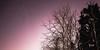 Muutama tähti / Few stars (Olli Tasso) Tags: lightpollution stars starry sky nightsky yötaivas taivas yö night tähdet tähtitaivas lempäälä nurmi suomi finland landscape maisema scenery yömaisema nightphotography yövalokuvaus trees puu talvi winter nature luonto luontovalokuvaus maisemavalokuvaus space astronomy avaruus longexposure pitkävalotus