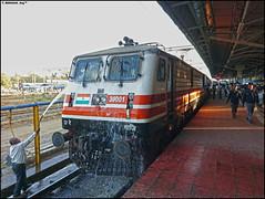 GZB WAP-5 (Abhishek Jog) Tags: gzbs abb 30001 takes nap before leaving for its 707 km journey the train was none other than undisputedking 12001 bhopal shatabdi wap5 hbj habibganj hbjndls ndls habibganjnewdelhi new delhi towards bhopaljn ghaziabad switzerland imported from