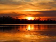 Coucher de soleil sur le lac.... (Ezzo33) Tags: france gironde nouvelleaquitaine bordeaux ezzo33 nammour ezzat sony rx10m3 ville paysage lac coucher soleil orange de sunset ciel sky