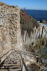IMG_7610 (mudsharkalex) Tags: california pacificgrove pacificgroveca step steps stairs