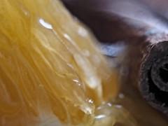 Winter aroma (benkoerita) Tags: citrus macro