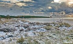 Am Greifswalder Bodden (garzer06) Tags: wolken winter schnee wasser deutschland maltzien landschaftsfoto baum grün weis landschaftsbild mecklenburgvorpommern landscapephotography inselrügen naturphotography insel naturfotografie rügen landschaftsfotografie