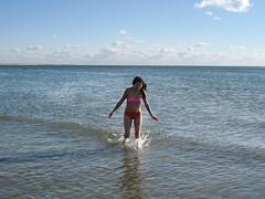 Coney Island Polar Bear Plunge (Sue L C) Tags: newyorkcity coneyisland polarbearplunge newyearsday