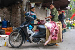 The Butcher (Jeff Williams 03) Tags: motorbike pig pork meat butcher vendor hanoi vietnam street photography