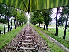 Love, Rain, Railway (tanvirrashid01) Tags: love tanvir tanvirrashid railway rain rainyseason loveineverywhere chittagong cornel hat walk everything evergreen lovely clam concentrate