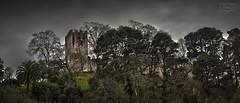 El Castillo (Jose Antonio. 62) Tags: spain españa asturias elcastillo castle castillo torre tower