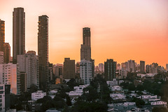 Atardecer Barranquillero (Alexandra Insignares I.) Tags: city sky skyline skyscraper tree park sunset building barranquilla colombia barranquillacity atardecer tropico caribe tropical