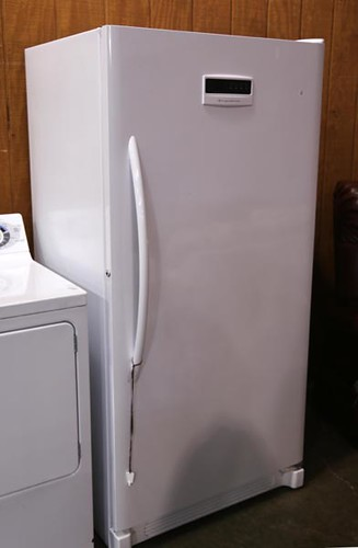 Frigidaire Upright Freezer ($224.00)