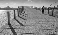 shadowland (stevefge) Tags: nederland netherlands nijmegen nl nederlandvandaag gelderland blackandwhite bw monochrome zw zwartwit bridges shadows people candid women rivers waal perspective winter bruggen reflectyourworld