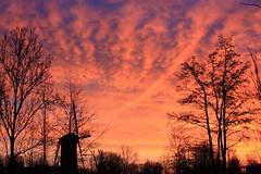 Morning Mill. (Crazy Rudie) Tags: azuro hollanda landschap landscape blue blauw nederland rotterdam ochtend orange oranje sky lucht molen mill