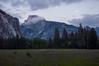 Meadow Below Half Dome (maryalicephotos) Tags: may2017 yosemite yosemitenationalpark halfdome deer yosemiteatnight yosemitemoonlight yosemitemay2017 yosemitemeadow twilight yosemitesunset yosemitenighttime yosemitephotography