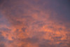 Faces of the Gods (haddartist) Tags: cloud clouds cloudy sky skyscape cloudscape sunset dusk evening color colorful forms face faces artsy artistic nature art naturalart natal riograndedonorte brasil brazil
