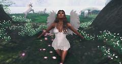 Whimsy Angel (♥Kelly Parker♥) Tags: secondlife sl virtual 3d avatar blog secondlifeblog blogger fashionblog beauty slblogging blogging runaway hair cindy glamaffair lelutka bentohead maitreya meshbody mesh blueberry fashiowlposes bento bentoposes poses pose theliaisoncollaborative new newrelease wings angel fantasy fairytale photography firestorm whimsy unicorns magical beautiful props portrait mystical fae forest fairy