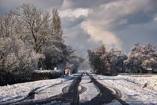 2016-03 Winters landschap op Voorne-Putten - Hellevoetsluis/NL