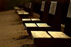 Un alto en el camino (portalealba) Tags: zaragoza zaragozaparque aragon españa spain portalealba canon eos1300d 1001nights 1001nightsmagiccity