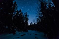 IMG_0047 (Marko Pennanen) Tags: auroraborealis joensuu linnunrata lumi milkyway night nightphotography nightsky northernlights revontuli snow talvi tähdet tähtitaivas vekaruksenulkoilualue vekarus winter