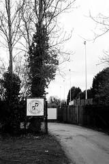 St Ives Town FC (tercrossman87) Tags: canon canonet ql17 giii ilford hp5 400 1600 push ilfotec microphen stock home development film plustek 8200i