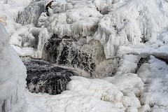 Elgaafoss (7 von 12) (Dirk Rosin) Tags: elgafoss land landschaft landschaftnatur norge norway norwegen steder winter eis foss ice is landskap vinter wasserfall østfold no