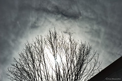 reach for the sky (Lou Musacchio) Tags: sun solar sky atmosphere weather clouds overcast