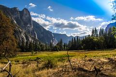 Yosemite.Village.2600p.010 (l.dardennes) Tags: yosemite yosemitenationalpark california usa canoneos7dmarkii sigma1750mmf28 yosemitevalley étatsunis us