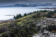 Islande, Thingvellir, 27 (Patrick.Raymond (4M views)) Tags: islande froid gel hiver neige glace cascade cercle dor hdr nikon