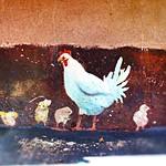 Tomatillo's Chicks thumbnail