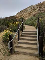 IMG_20180321_105531 (joeginder) Tags: jrglongbeach longpoint terranea californa pacific ocean coast palosverdes