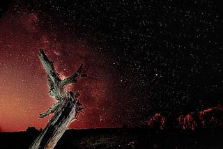 Galactic Stump