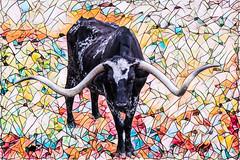 Stain Glass Long Horn (djking) Tags: johnsonspacecenter unitedstatesofamerica usa texas houston longhorn cow
