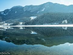 Grundlsee (schasa68) Tags: loveaustria austria see grundlsee gewässer berge mountains spiegelung reflection steiermark styria landschaft landscape nature natur