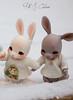 2018jinju-family13 (Nathy1317) Tags: bjd doll cocoriang tobi jumeaux ドール、人形